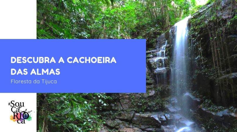 Descubra a Cachoeira das Almas - Floresta da Tijuca
