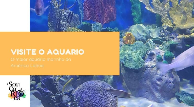 Conheça o AquaRio com a Sou Mais