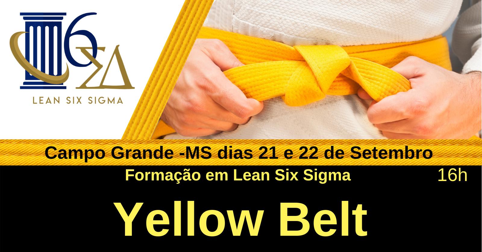 Formação em Lean Six Sigma Yellow Belt- Campo Grande MS - Sympla