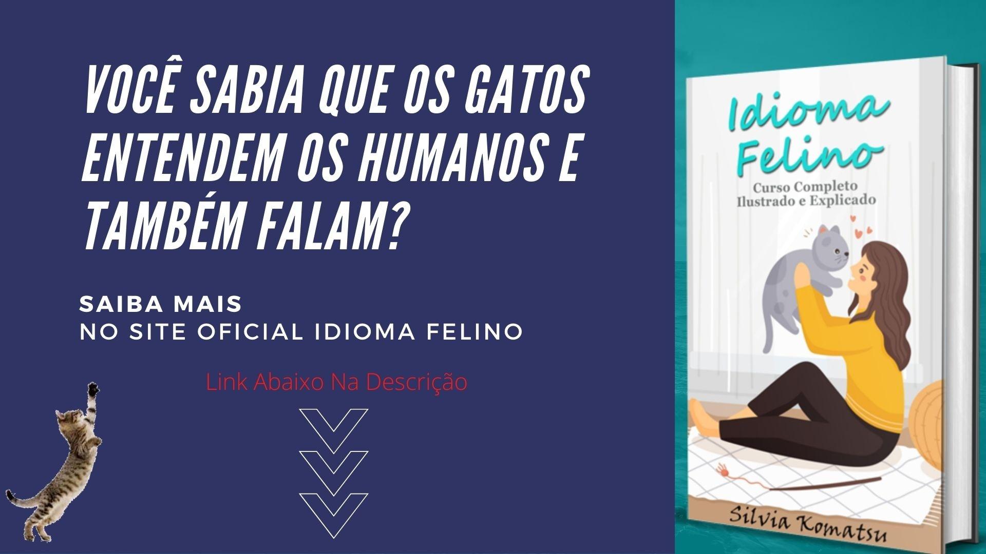 idioma felino livro pdf